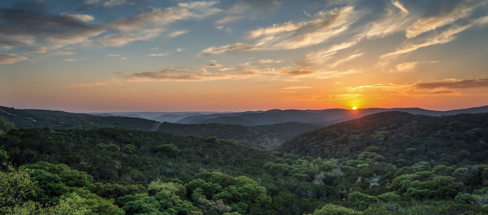 dripping-springs-header-image-2020.jpg